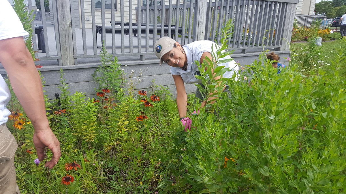 A woman digs in the native plant pollinator garden.