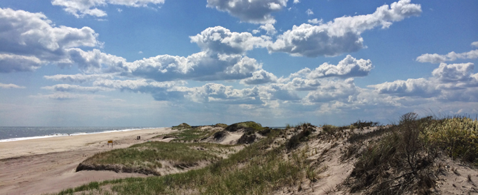 Meandering dune line on Fire Island