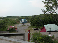 Two small tents are nestled among short island trees and shrubs.