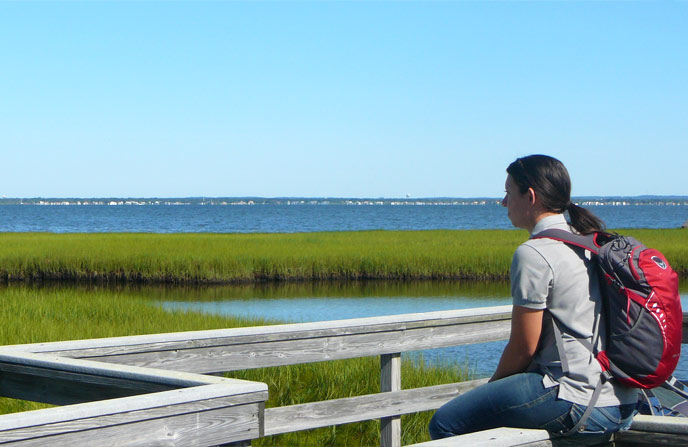 Teacher-Ranger-Teacher, Andrea Montalvo, gazes across the Watch Hill salt marsh.