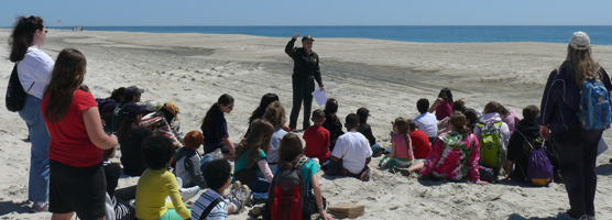 National Junior Ranger Day beach walk with children and parents.