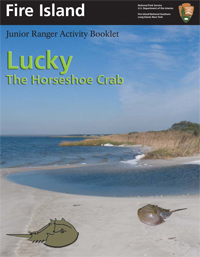 Lucky the Horseshoe Crab Junior Ranger Activity Booklet