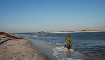 Park employee walking along shoreline to monitor the breach at Old Inlet.