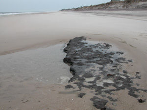Exposed black peat is uncovered on ocean beach.