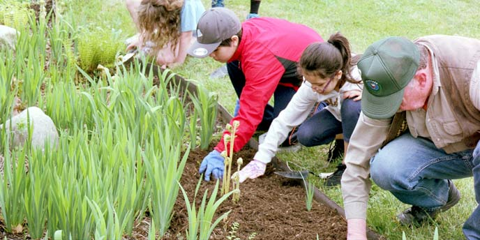 Volunteers weed Fire Island National Seashore's Native Plan/Pollinator Garden
