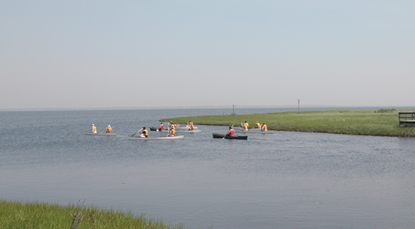 Canoeists paddle along salt marsh into bay.