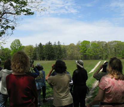 Spring birdwatching walk at William Floyd Estate.
