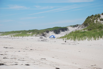 Small backpacker tent on beach near dunes