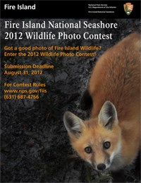 2012 Wildlife Photo Contest flyer