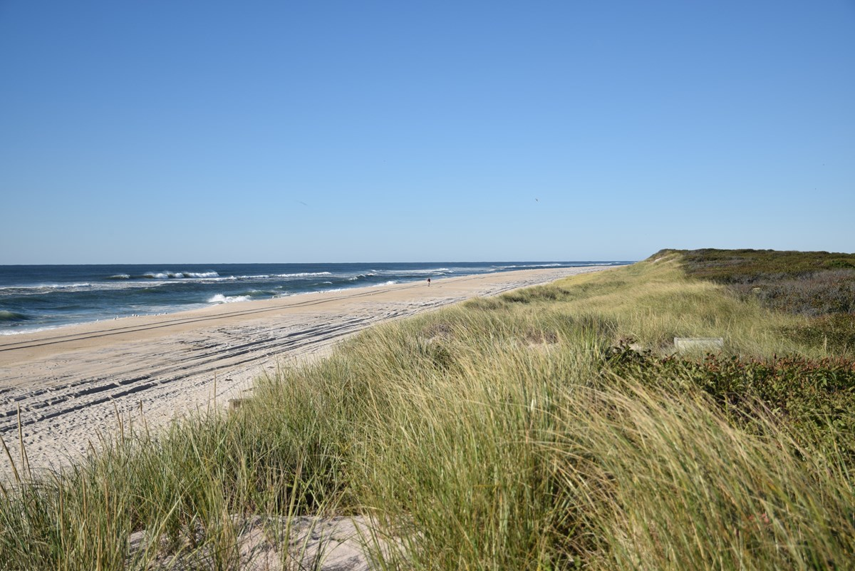 View of dunes, beach and ocean from Barrett Beach on Fire Island
