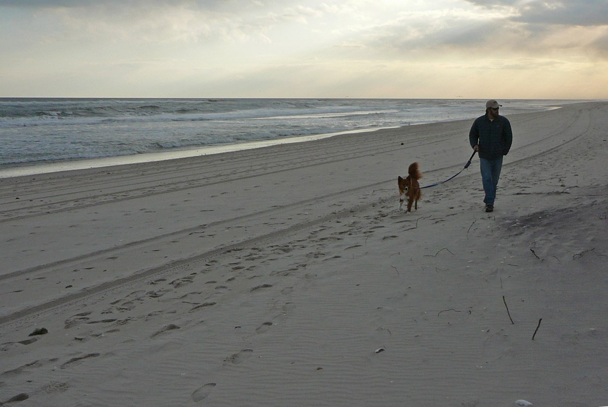 From March 15 through Labor Day, pets are not permitted on ocean beaches. After Labor Day, leashed pets are permitted.