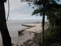 Eroding shoreline beside shrubs and trees, bulkhead and marina in background.
