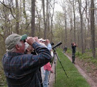Birdwatching at William Floyd Estate.