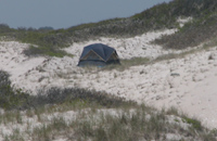 Small tent in open swale between dunes.