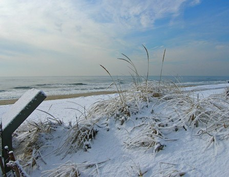 Snow covers the dunes during winter at Fire Island National Seashore.
