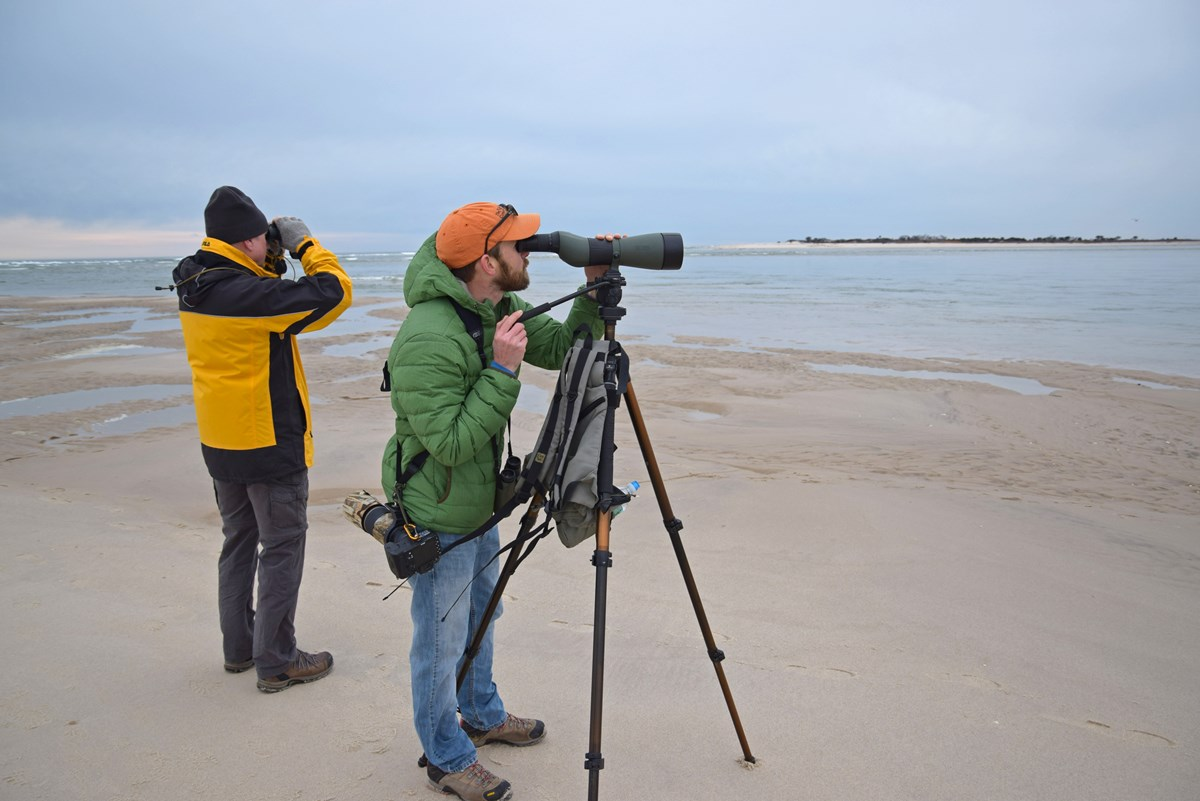 Two people birdwatching at the breach on Fire Island.
