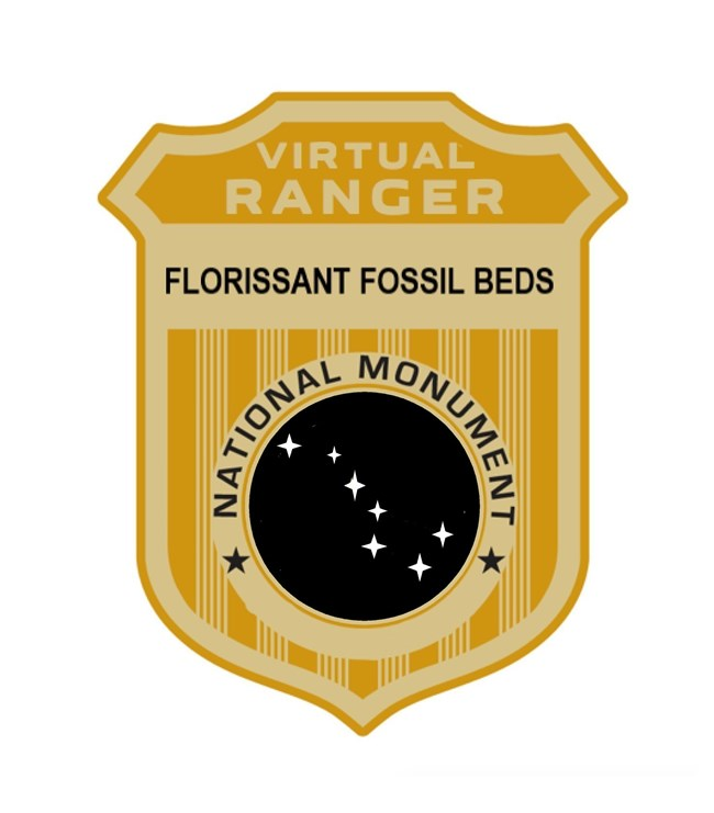 Gold Virtual Florissant Fossil Beds Junior Ranger badge with Big Dipper constellation