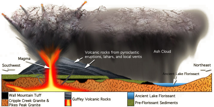Idealized cross-section of the late Eocene landscape of Guffey and Florissant (Joseph Hall).