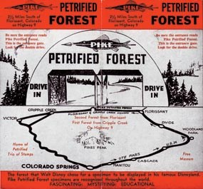 Image of brochure for the Pike Petrified Forest