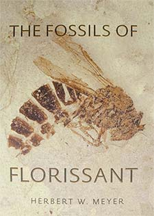 Fossils of Florissant