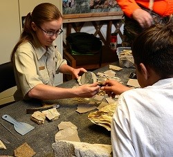 Volunteer splitting shale for visitors in Fossil Learning Lab