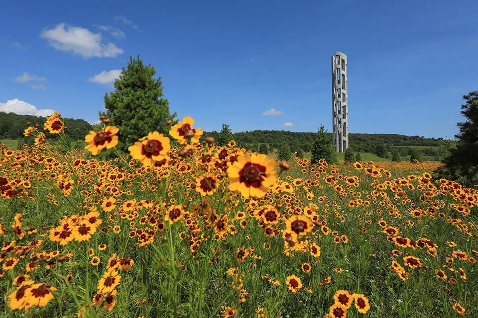 The Tower of Voices stands over a meadow of wildflowers.