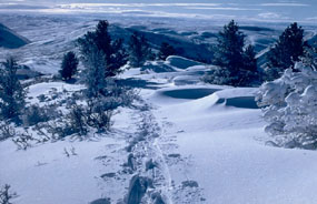Snowshoeing is one way to experience the snow covered winter landscape of Fossil Butte National Monument.  Pictured here are snowshoe tracks along Cundick Ridge.