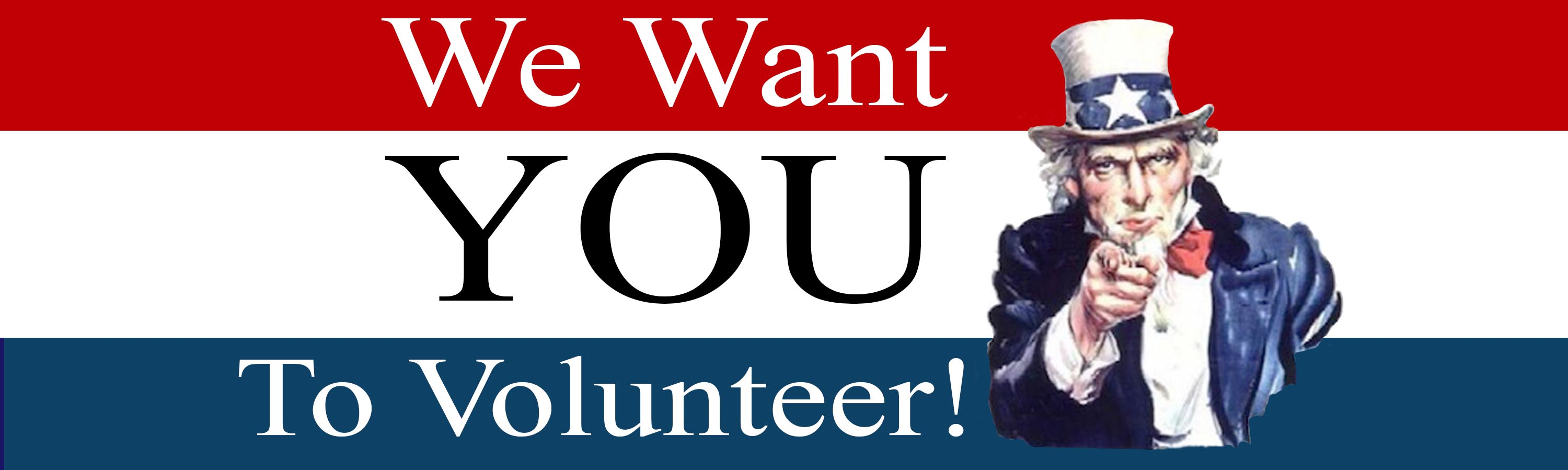 i want you to volunteer - photo #4