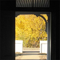 Tree with yellow leaves through a doorway.