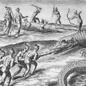 Timucuan Indians hunt alligators.