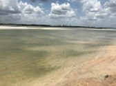 Low Tide View of the Matanzas River