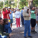 Visitors see a large variety of birds on the monthly bird walk.