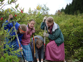 Girls with shovels digging up a bush