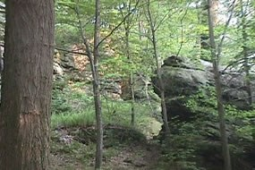 Rock and Cliff at Jumonville Glen