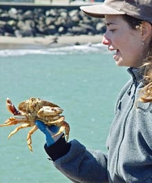 Person holding a crab at the pier-crabbing program.