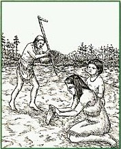 Indians planting and harvesting crops