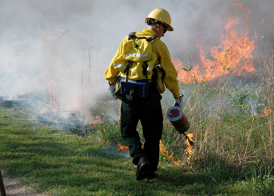 Firefighter uses a drip torch to light portions of the tallgrass prairie.