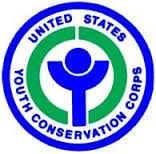 Blue and green YCC logo
