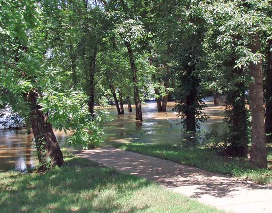 river flooding over park's sidewalk