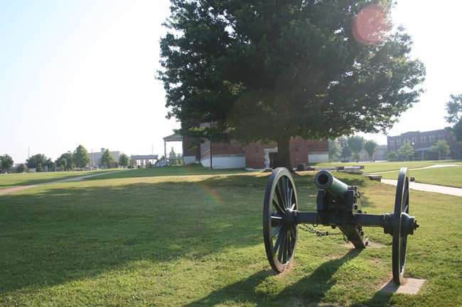 a civil war replica cannon sits on a green field with a large tree in the background.