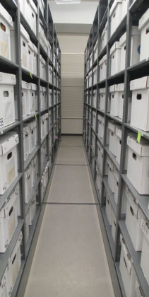 Compact shelving contains numerous boxes inside collection storage.