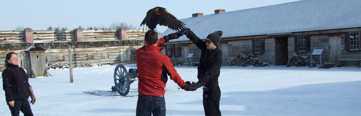 two people hold their hands in a large circle. a large black bird flys through.