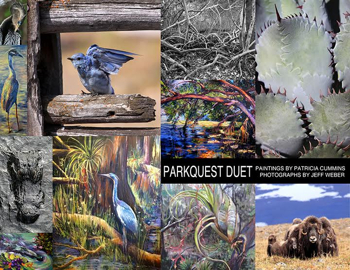 A collage of outdoor, painted images, including a great blue heron, a southern hardwood swamp and a bromeliad.