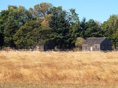 Photo of small cabins in a field.