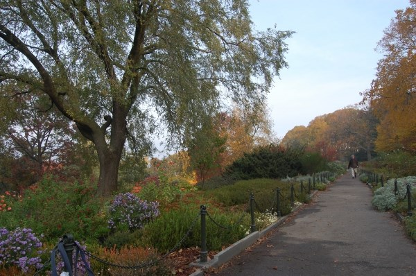Modern photo of the Heather Garden in Fort Tryon Park.
