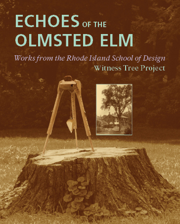 A postcard for the exhibit showing a plumb bob and tripod standing on the stump of the Olmsted Elm as well as a historic image of the Olmsted Elm.