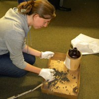Intern Rebecca Gavin examining the contents of a jug in the collection.