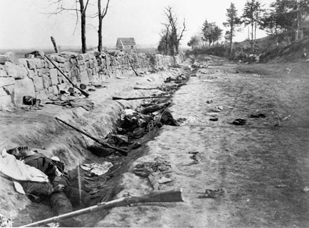 Confederate dead in the Sunken Road