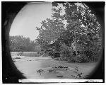 Quarles Mills (Library of Congress)