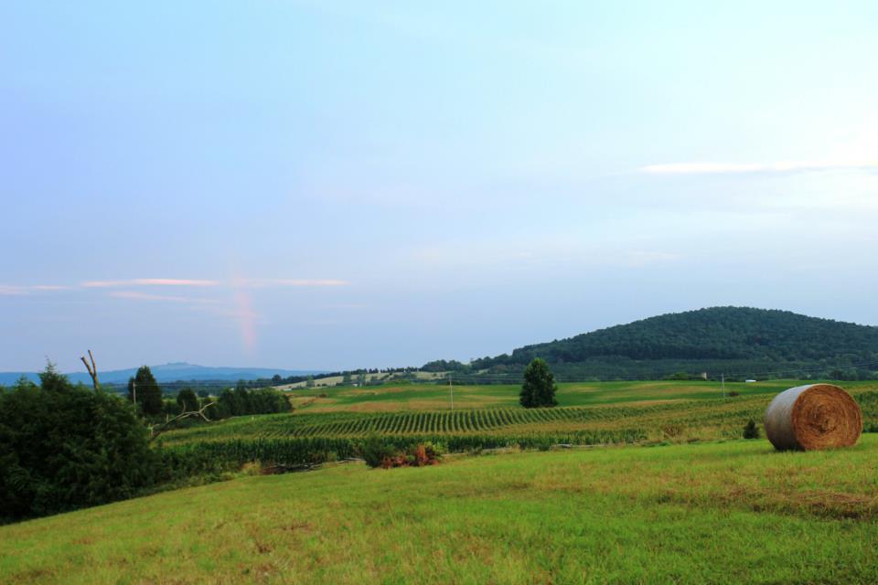 Civil War Battlefields in Virginia - Fredericksburg ...